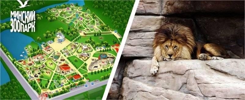 Минский зоопарк