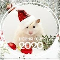 Новый год 2020 Белая Металлическая Крыса