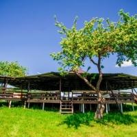 Беседки в базе отдыха «Красногорка» в Витебскe